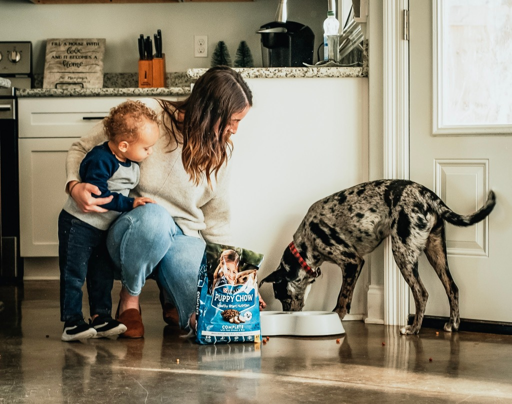Catahoula Mix, Lola, enjoying her Purina Puppy Chow as Sarah and Izzy Mozingo watch